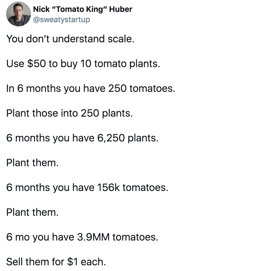 """Nick """"Tomato King"""" Huber (@sweatystartup) tweets: You don't understand scale.  Use $50 to buy 10 tomato plants.  In 6 months you have 250 tomatoes. Plant those into 250 plants. 6 months you have 6,250 plants. Plant them. 6 months you have 156k tomatoes. Plant them. 6 mo you have 3.9MM tomatoes. Sell them for $1 each."""
