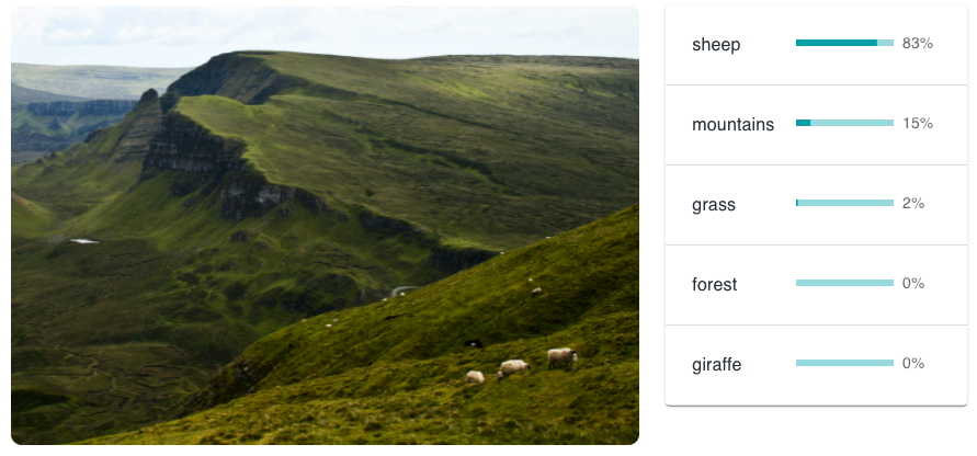 A picture of sheep grazing in Scotland. The AI has rated it as sheep: 83%; mountains: 15%; grass: 2%; forest: 0%; giraffe: 0%.