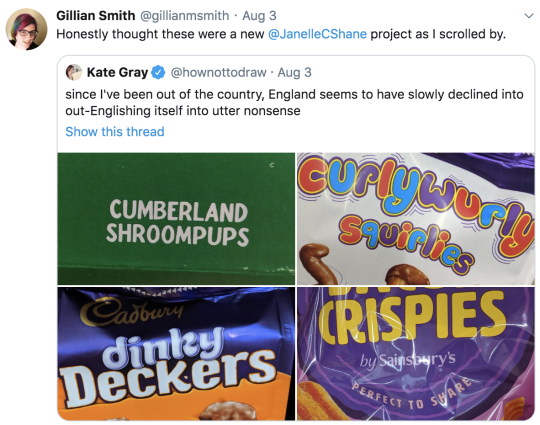Twitter screenshot: Gillian Smith @gilliansmith: Honestly thought these were a new @JanelleCShane project. RT: Kate Grey @hownottodraw: since I've been out of the country, England seems to have slowly declined into out-Englishing itself into utter nonsense. Photos of Bacon Crispies Cumberland Shroompups Curlywurly Squirlies dinky Deckers