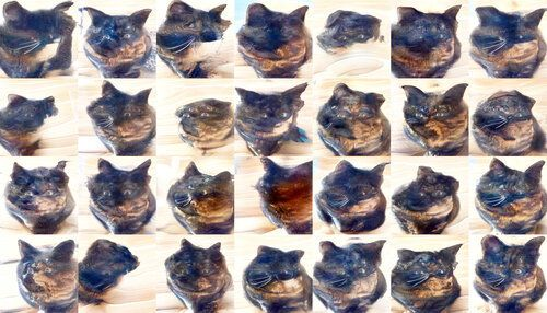 Squished/distorted cats. Ears are clearly visible, and most still have human eyes that have allmost disappeared. In some the stripes still show hints of being human features, while in others they're definitely cat stripes. A few cats still have faint glasses.