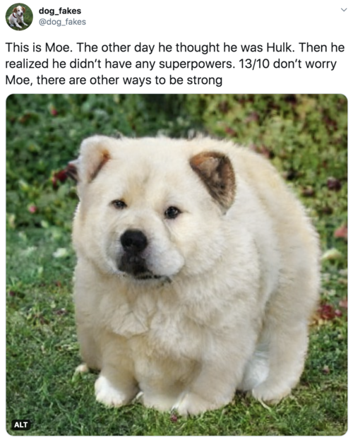 This is Moe. The other day he thought he was Hulk. Then he realized he didn't have any superpowers. 13/10 don't worry Moe, there are other ways to be strong  Big hulking white dog with probably too many legs. Slightly worried expression.