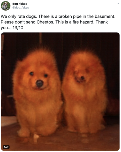 We only rate dogs. There is a broken pipe in the basement. Please don't send Cheetos. This is a fire hazard. Thank you... 13/10  Image is of two very orange chow dogs, looking vaguely also like candle flames