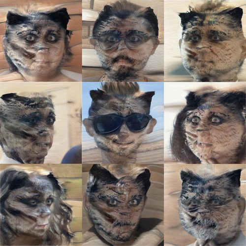 It's a sequence of people with furry tortoiseshell faces. Most have very dark rings around their eyes as if they're wearing mascara. Some have moustaches that are made of black striped fur, or longer fur. Their irises have gone strangely blonde. It is quite horrible.
