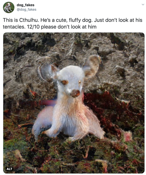 This is Cthulhu. He's a cute, fluffy dog. Just don't look at his tentacles. 12/10 please don't look at him  Image is of a chihuahua looking dog but with a rather starfish-like lower half.