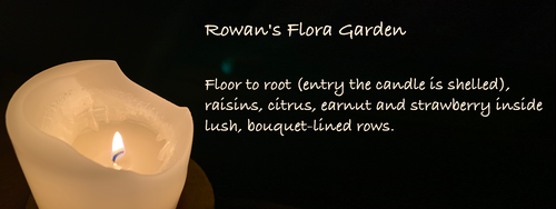 Rowan's Flora Garden Floor to root (entry the candle is shelled), raisins, citrus, earnut and strawberry inside lush, bouquet-lined rows.