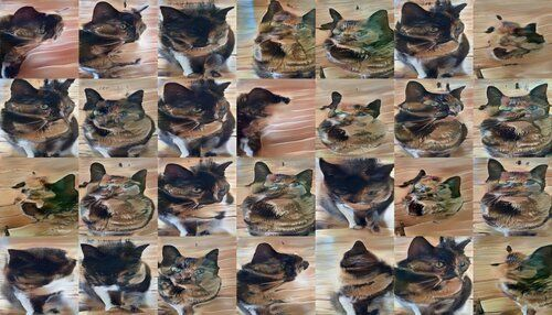 The cats are now starting to distort and disintegrate. They're barely recognizable. They're definitely not turning into humans.